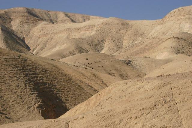 Mire lehet elég a sivatag?