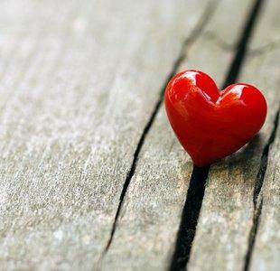 Kép: Love: Passion and Decision