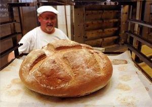 Kép: Idén is összefogással dagasztják a magyarok kenyerét